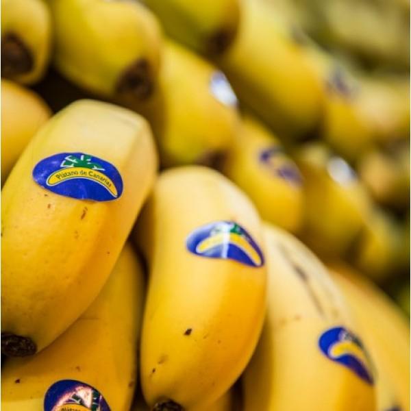 Banana Canárias